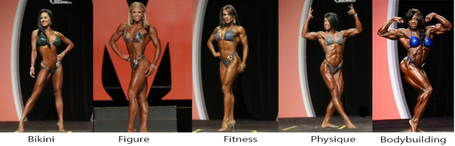 women's bodybuilding  divisions